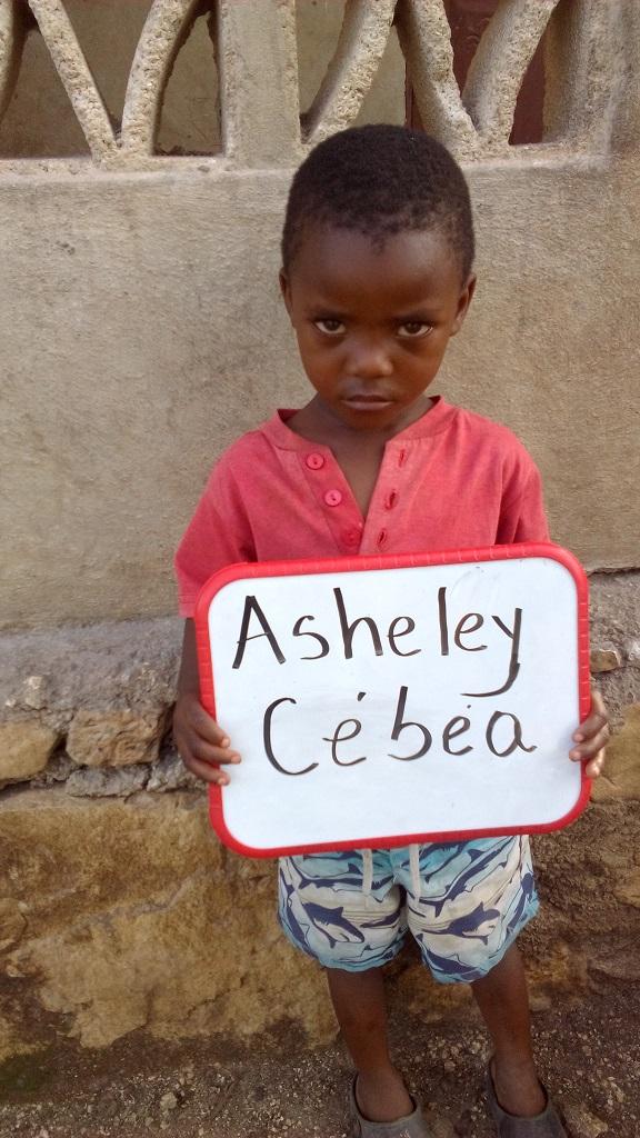 Asheley Cebea